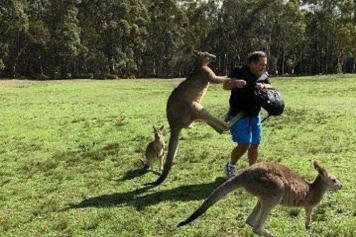 初到澳洲遇到Culture shock了吗,如何减少文化冲击?大师兄给你讲讲。