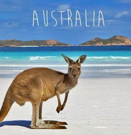 初来澳洲, 银行卡,电话卡,租房我该如何选择?